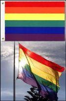 Regnbueflag luksus - Large