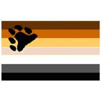 The Boy's Bear Pride Flag