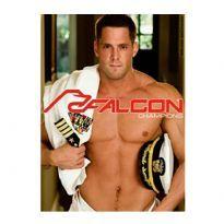 Falcon Champions