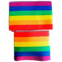 Team Captain rainbow armband