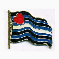 Wavy Leather Flag Pin