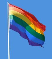 The Homoware Boys' Rainbow Flag