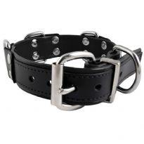 Mr. B Slave Collar - 4 D-Rings