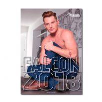 FALCON 2018
